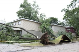 does homeowners insurance cover wind damage